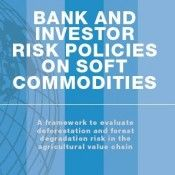 Bank and Investor Policies
