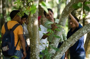 Yoni Sima (center right, in green shirt) explains the fine art of measuring trees. Photo credit: Carlos Herrera