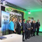 ForestMinisters1 (3)