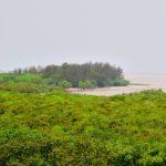 sundarbans-coastline-1333088-639x427