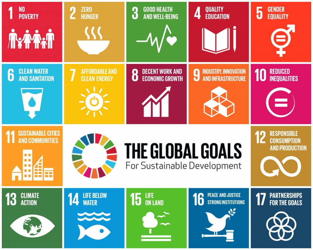 More than 15 world leaders signed off on the 17 Sustainable Development Goals last year, and proponents hope they'll become the guiding benchmarks for businesses around the world.