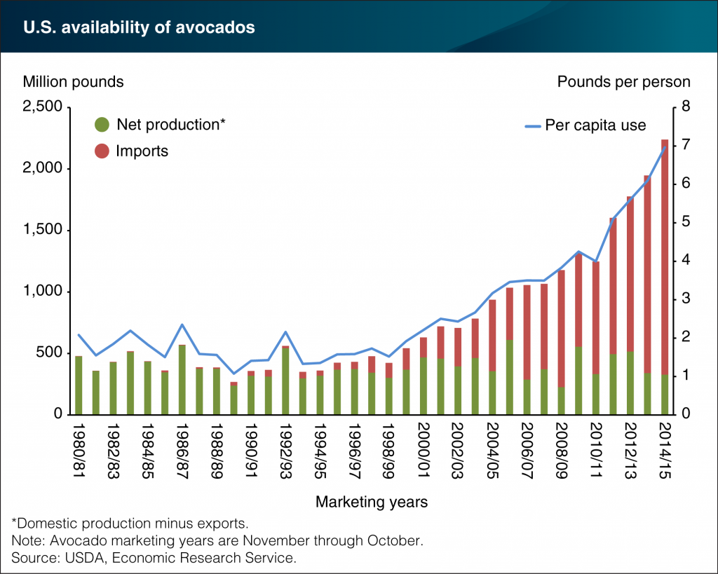 Avocado imports grow to meet increasing U.S. demand