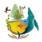 Logo_COP13_horizontal-ingles-01