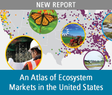 An Atlas of Ecosystem Markets in the United States