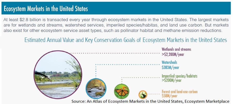 EcosystemMarkets