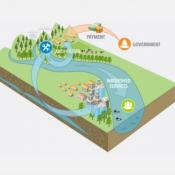 Water Mechanisms (2)
