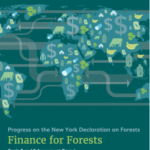 FinanceForForests