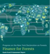 FinanceForForests