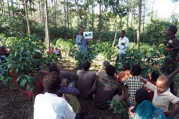 A training session in Oromia. Photo Credit: Technoserv