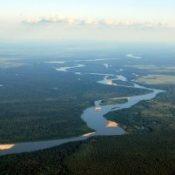 Brazil-Aerial-view-of-rainforest-300x201