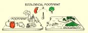 EcologicalFootprint